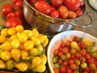 From Chef Shirley Lang's garden