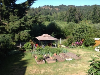 Chef Shirley Lang's garden