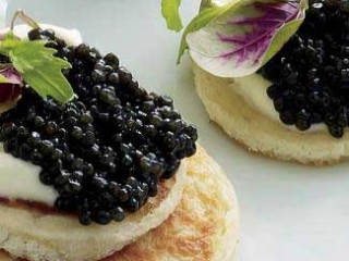 Caviar on Cream Cheese & Toast